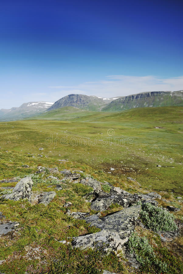 lapland lato Sweden widok obrazy stock