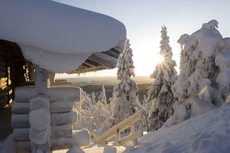 Download Lapland winter wonderland stock image. Image of blue, snow - 4208089