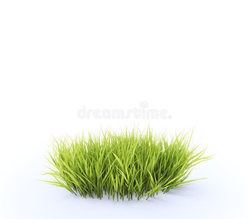 Lappa av gräs arkivbilder