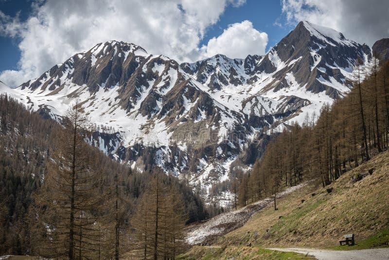 Lappago i den Val pusteriaen, Dolomites, Italien arkivbild