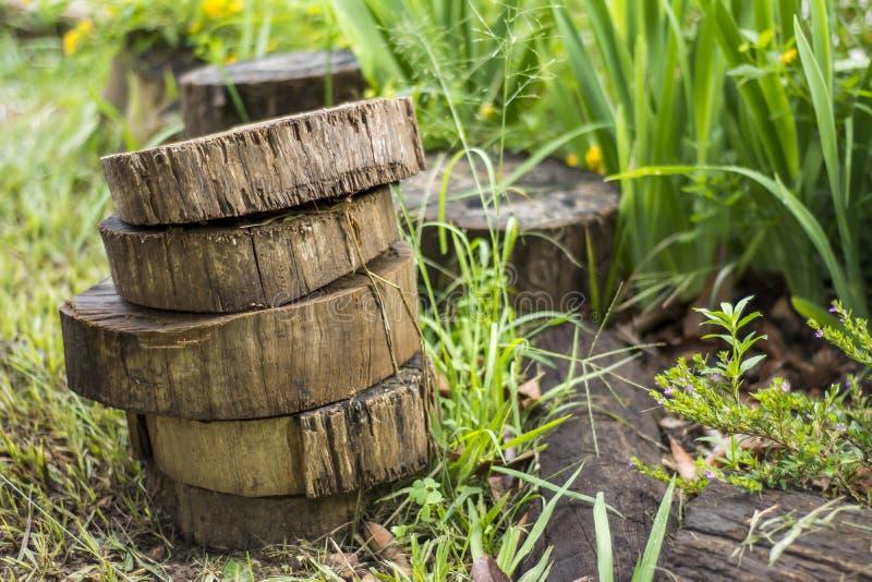 Lappar av trä fotografering för bildbyråer