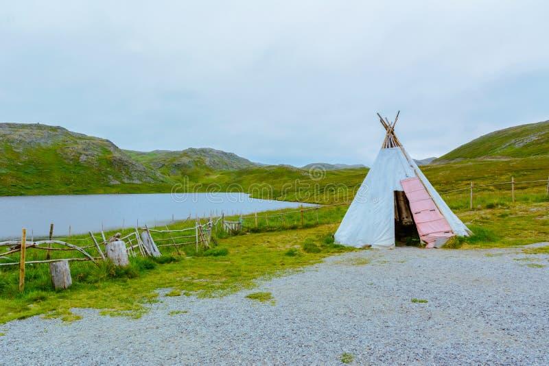 Lappish infeste la vue de la nature grave de la Norvège du nord de la manière d'été à Nordkapp photo stock
