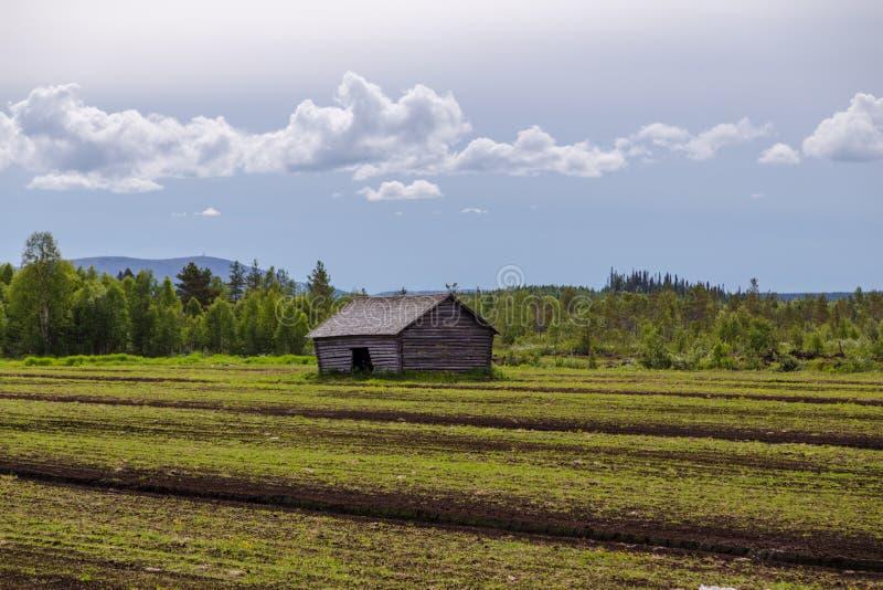 Lappland Finnland, alte Scheune auf einem Feld in Nord-Lappland lizenzfreie stockbilder