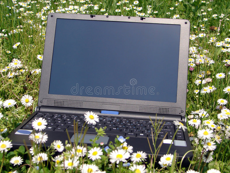Download Laptop stock image. Image of portable, daisy, office, grass - 747505