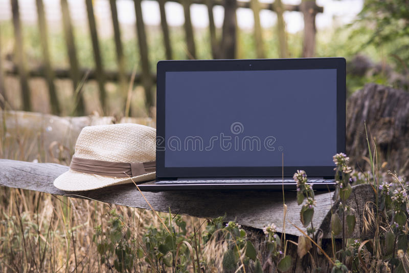 Download Laptop auf einer Holzbank stockbild. Bild von nave, überwachungsgerät - 96931153