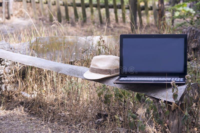 Download Laptop auf einer Holzbank stockfoto. Bild von laptop - 96931244