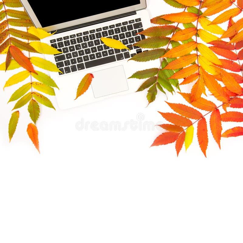 Laptop de Vlakte van de het Bureauwerkplaats van de herfstbladeren lag royalty-vrije stock afbeeldingen