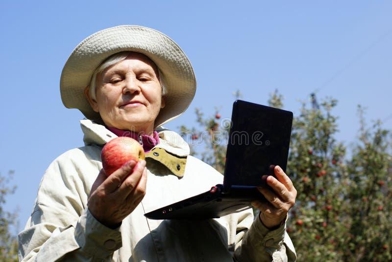 laptop jabłczana starsza kobieta zdjęcia royalty free
