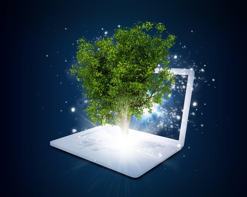 Laptop mit magischem grünem Baum und Strahlen des Lichtes stock abbildung