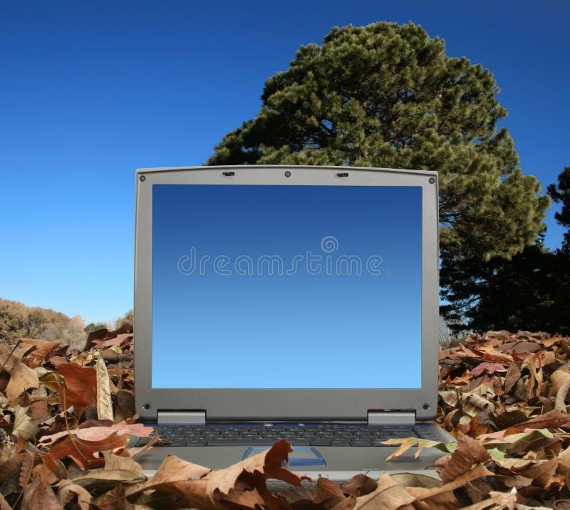 laptop na zewnątrz obraz stock