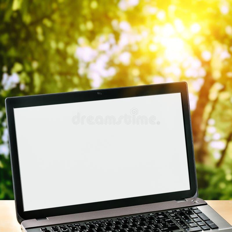 Laptop op groene aardachtergrond stock foto's