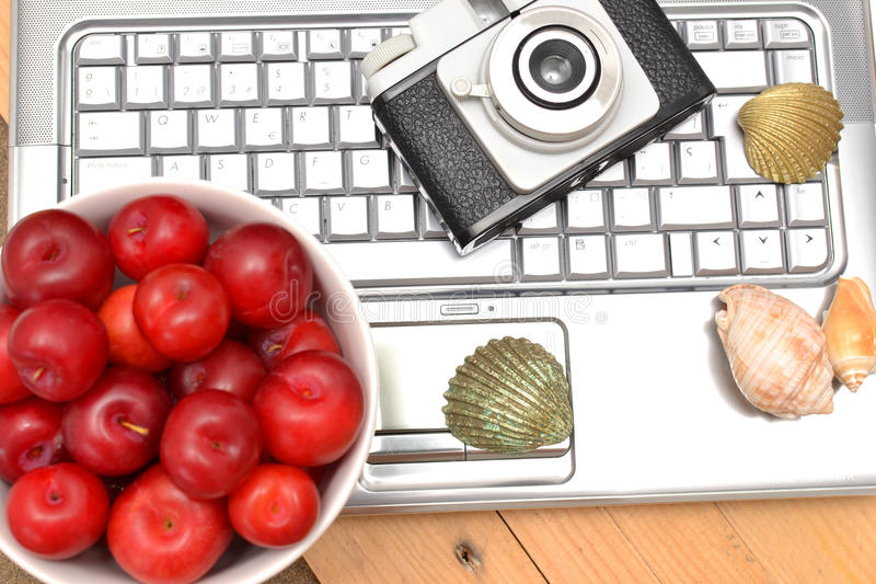 Laptop, Pflaumen und Oberteile stockfotografie