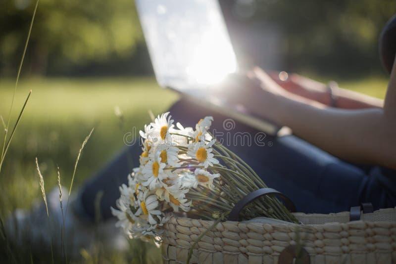 Laptop pracuje plenerowych stokrotka kwiaty fotografia stock