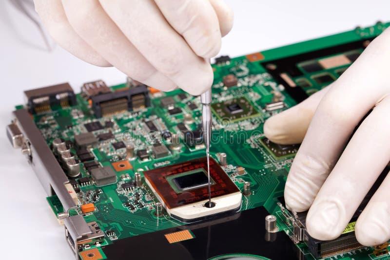 Download Laptop Processor Installing Stock Photo - Image: 24490096
