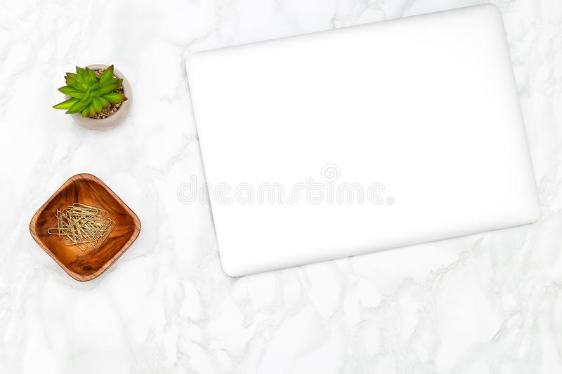 Laptop with succulent and golden paper clips on a marble background. Flat lay stock photos