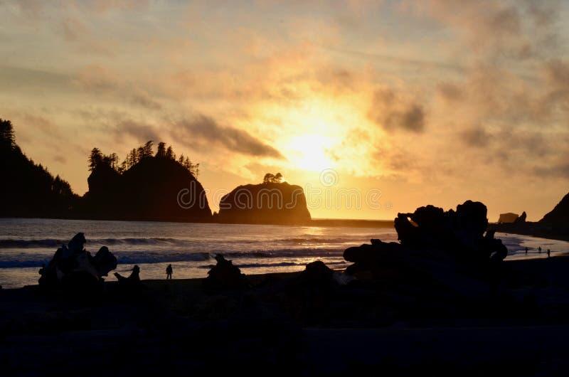 Lapush日落,婴孩!徒步旅行者&漂流木头剪影在海滩1,LaPush,华盛顿 库存照片