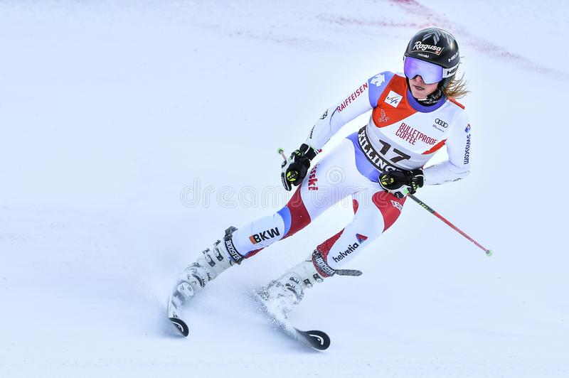 Lara Gut of SUI competes in the first run of the Giant Slalom. KILLINGTON, VERMONT - NOVEMBER 24: Lara Gut of SUI competes in the first run of the Giant Slalom royalty free stock images