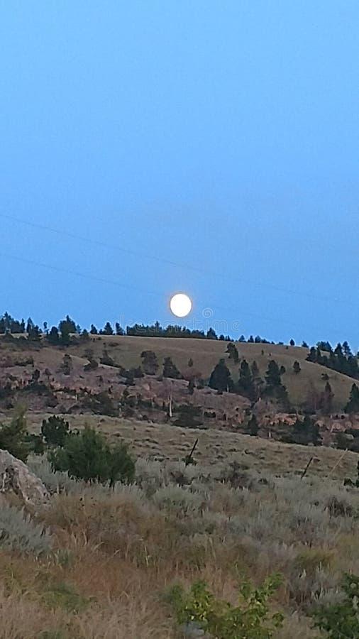 Laramie Peak Mounties imagens de stock