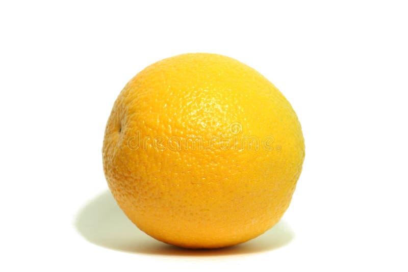 Laranja amarela imagem de stock