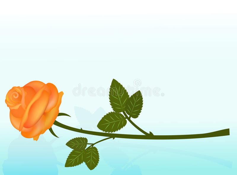 A laranja de encontro levantou-se ilustração stock