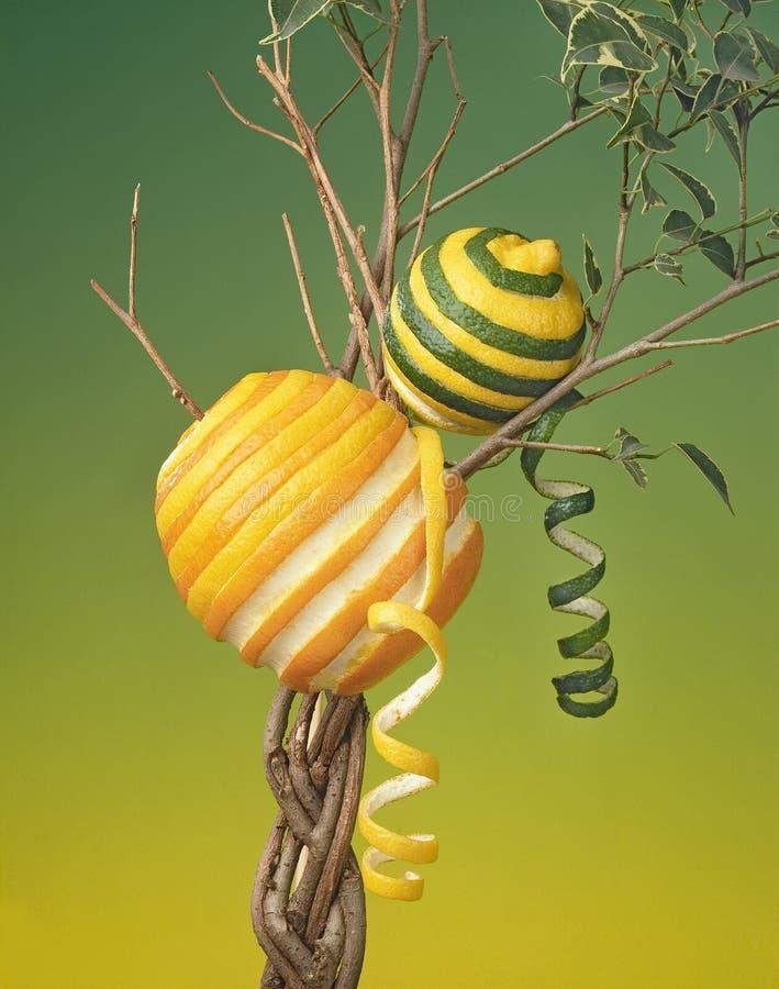 Laranja e limão que crescem em uma árvore fotografia de stock