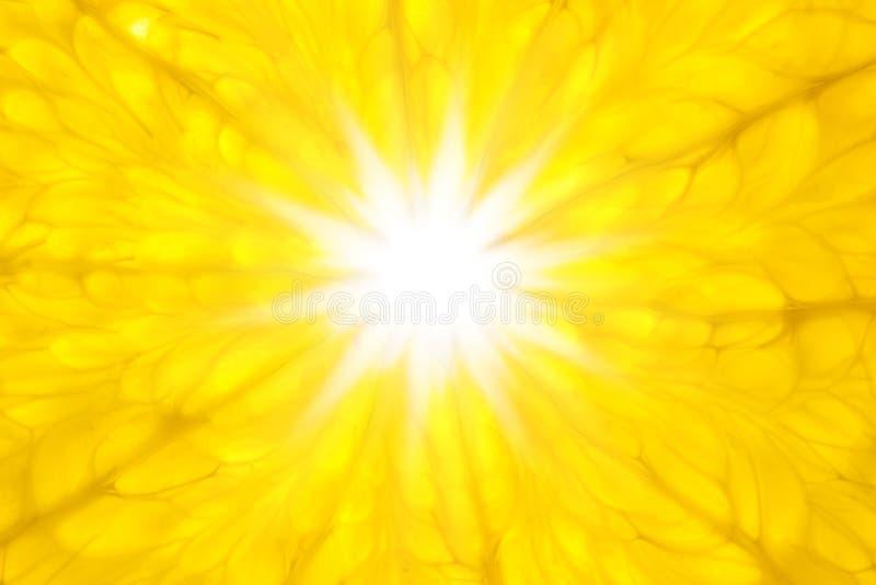 A laranja gosta de Sun/macro super/fundo foto de stock
