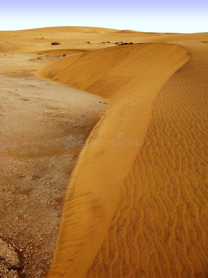 A laranja pequena coloriu dunas do deserto de Namib seco em Namíbia perto de Swakopmund, África do Sul imagem de stock