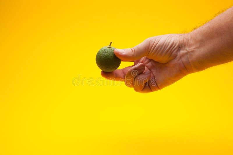 Laranja Verde numa mão foto de stock royalty free