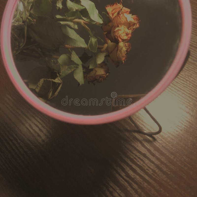 Laranja vermelha da rosa da tabela do espelho das rosas da beleza do amarelo da mola das flores fotos de stock