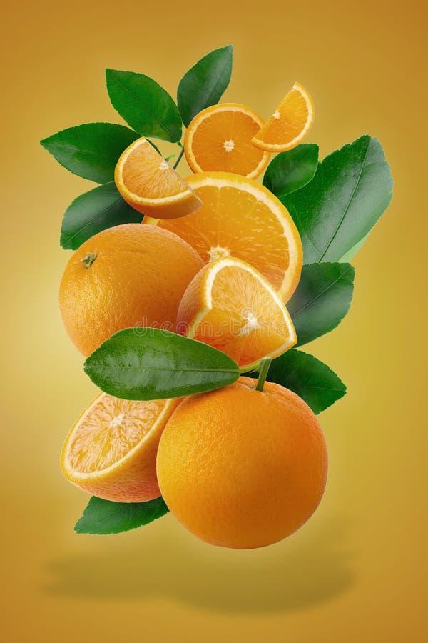 Laranjas cortadas frescas do ‹do †do ‹do †e fruto alaranjado isolados no fundo alaranjado ilustração do vetor