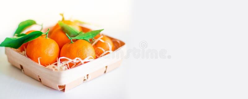 Laranjas das tangerinas, tangerinas, clementina, citrinas com folhas em uma cesta em um fundo branco, espaço da cópia foto de stock royalty free