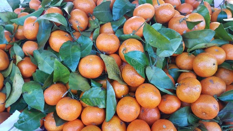 Laranjas das tangerinas, os mandarino, citrinas com as folhas colocadas para a venda na cabine no mercado imagens de stock
