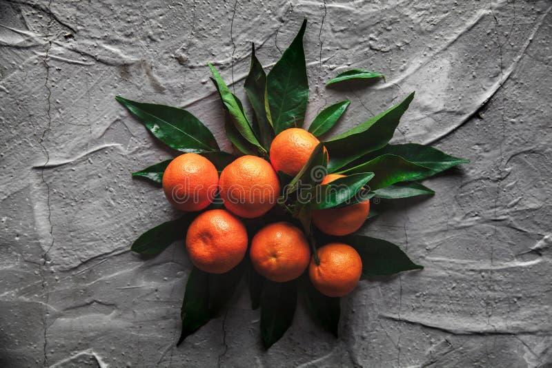Laranjas das tangerinas, os mandarino, clementina, citrinas com as folhas no fundo cinzento do cimento foto de stock royalty free