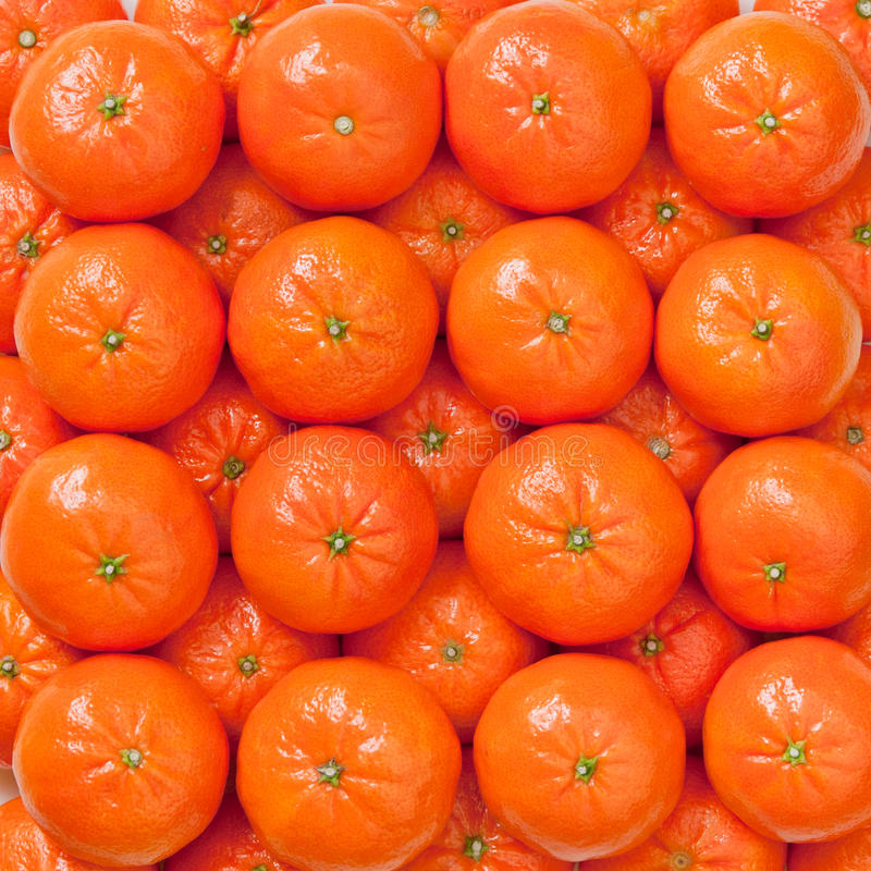 Laranjas frescas, fundo dos mandarino imagens de stock