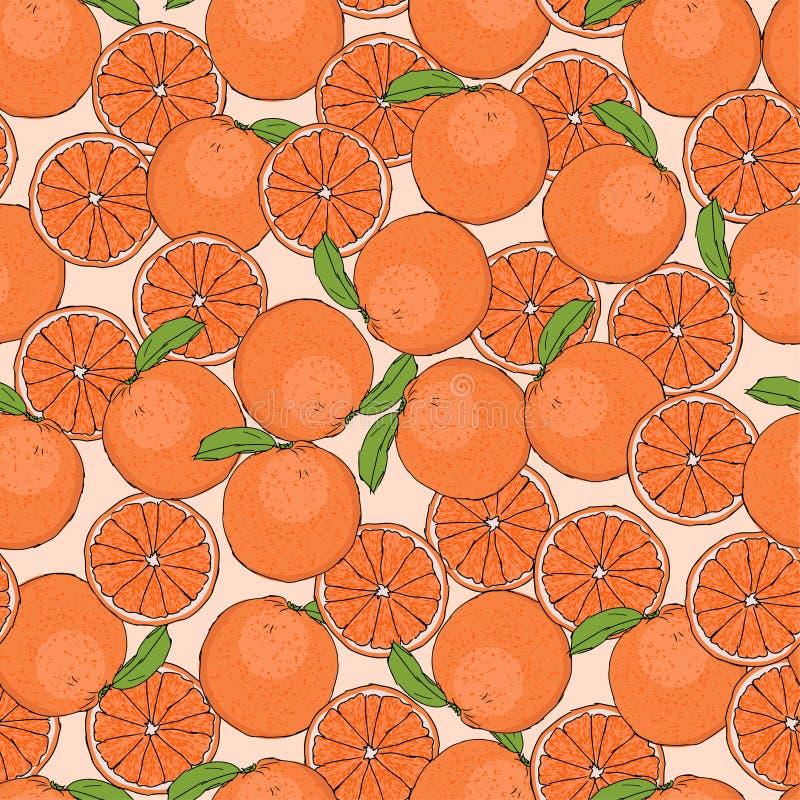 Laranjas frescas teste padrão sem emenda doce suculento, ilustração do vetor ilustração stock