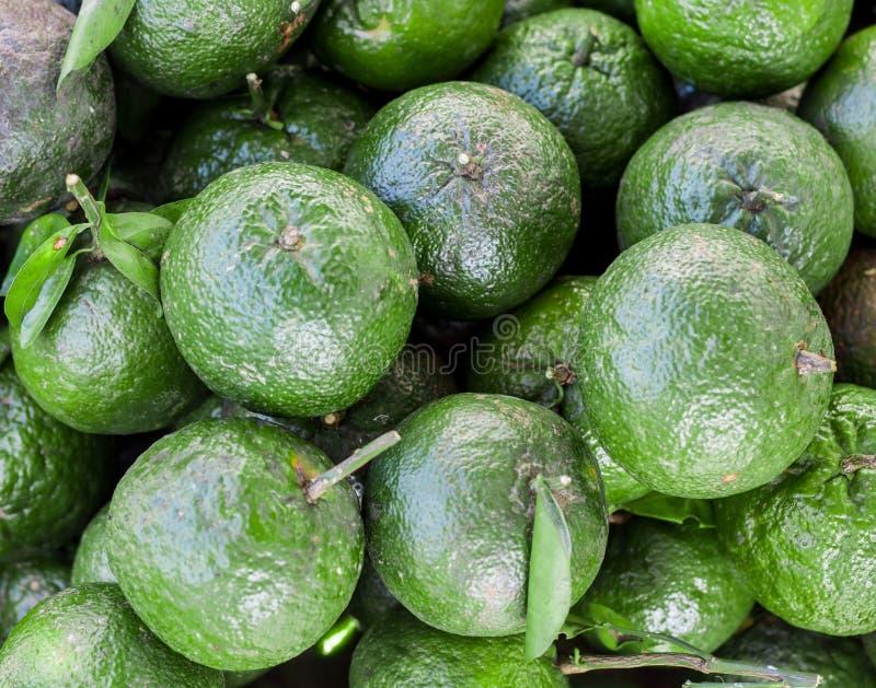 Laranjas verdes maduras sobre se fotos de stock