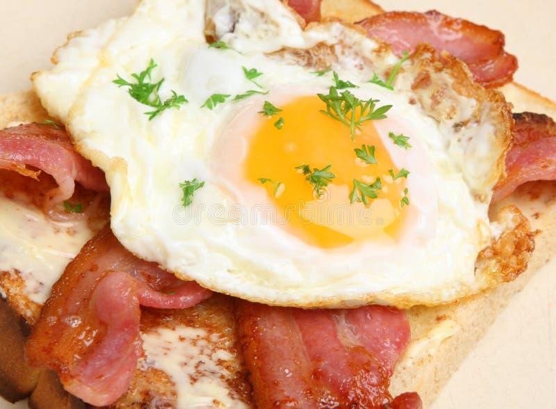 Lard et Fried Egg sur le pain grillé photographie stock
