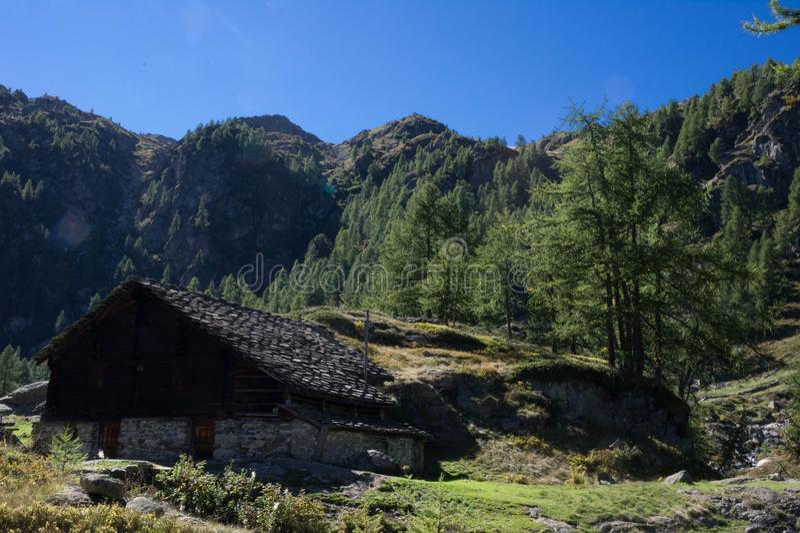 Larecchio de Alpe fotografia de stock