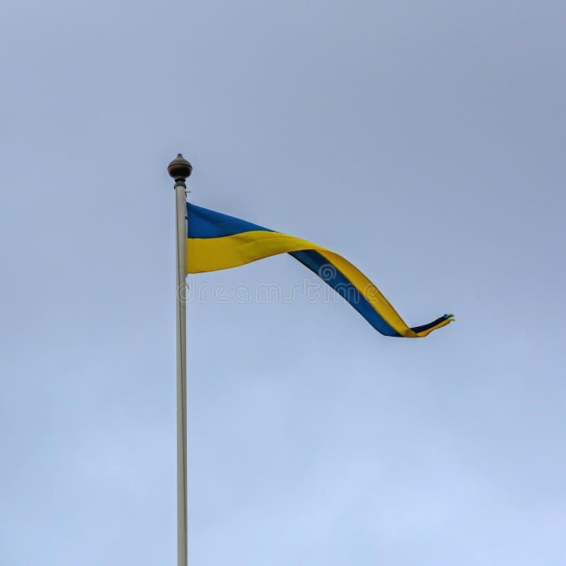 Larga bandera de Suecia fotos de archivo libres de regalías