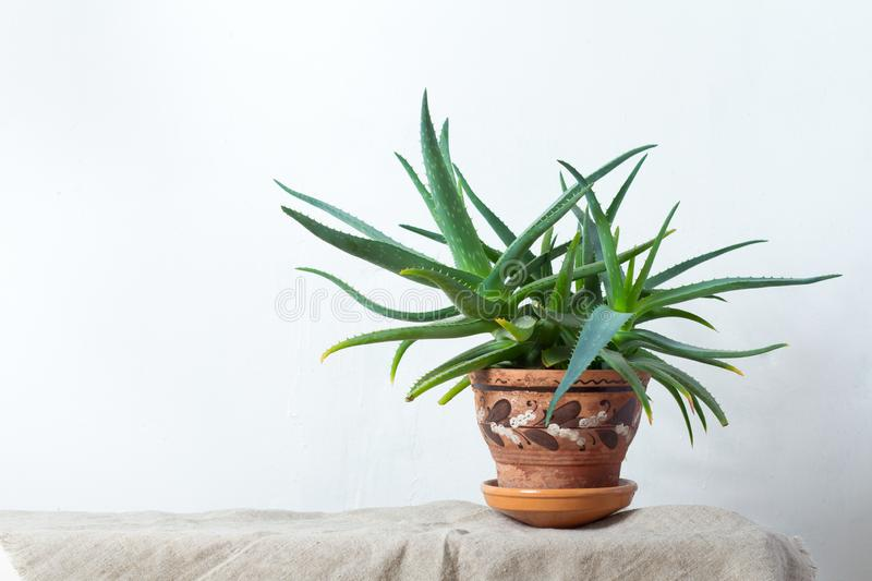 Large Vase From Clay With Ornament Stock Photo Image Of