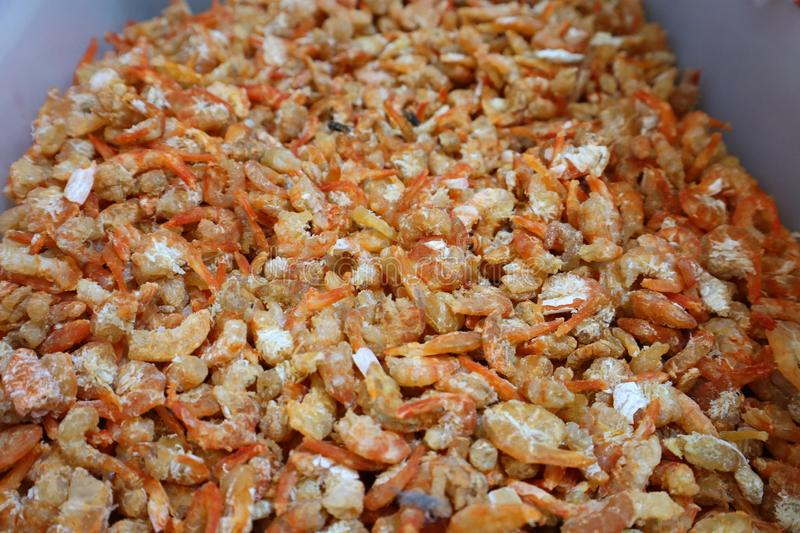 Large amount of dried shrimp There are flies in the fresh market. Large amount dried shrimp there flies fresh market royalty free stock images
