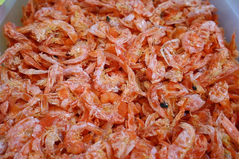 Large amount of dried shrimp There are flies in the fresh market. Large amount dried shrimp there flies fresh market royalty free stock photography