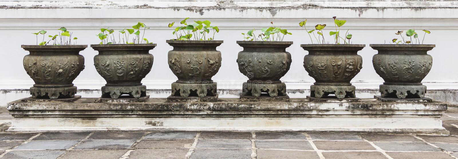 A large ancient cement pot are adorned with stucco molding with flower ornament used to plant lotus beautifully arranged. royalty free stock images