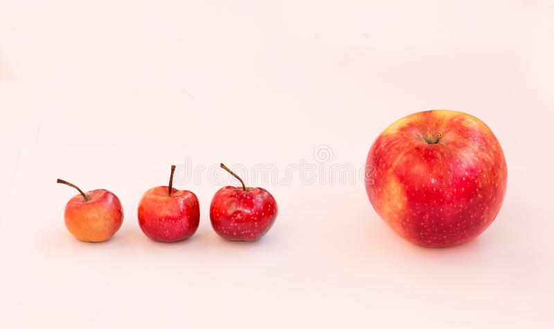 A large apple and behind it are 3 small paradise apples. The boss is ahead of him subordinates. Team of business employees. royalty free stock image