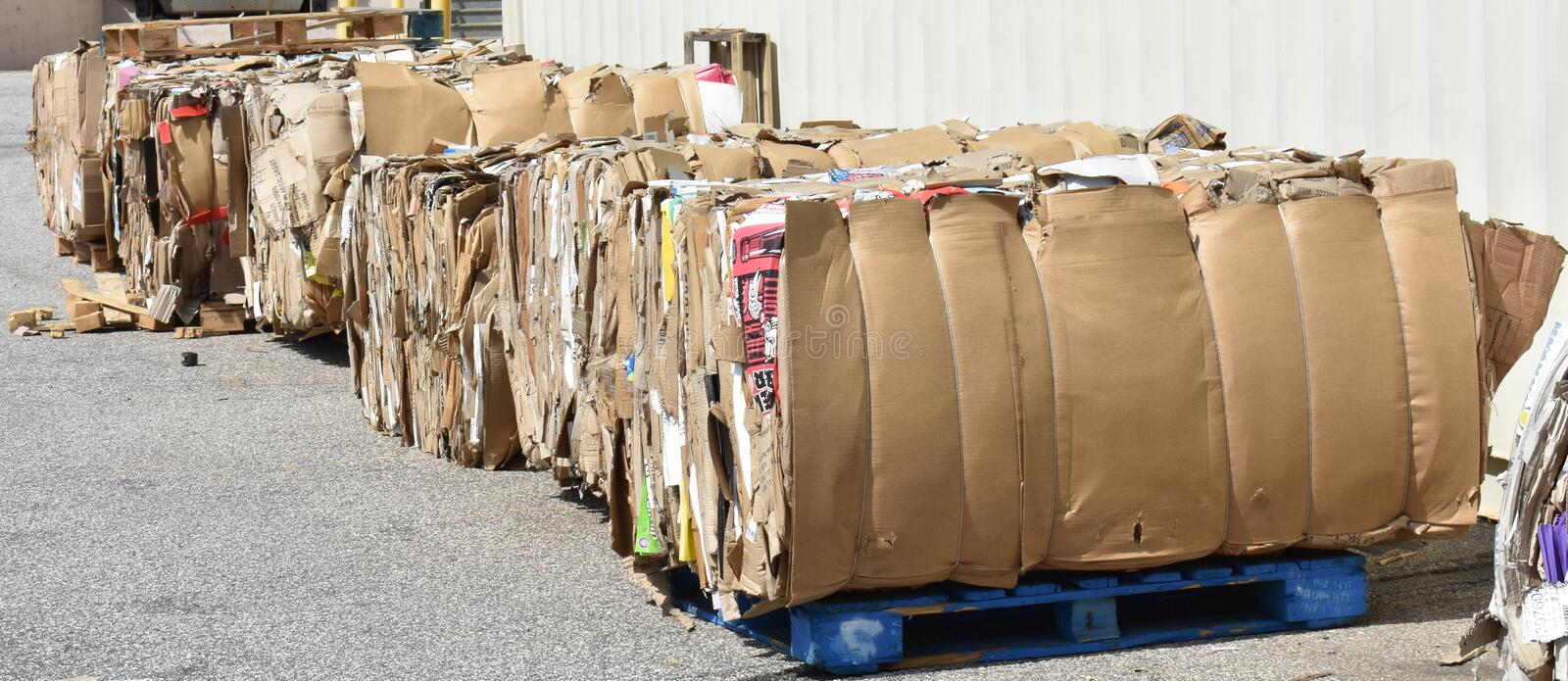 Large bales of cardboard await recycling. Large bales of palatalized cardboard await pickup by a recycling company. Much recycled cardboard and plastic in the US royalty free stock image