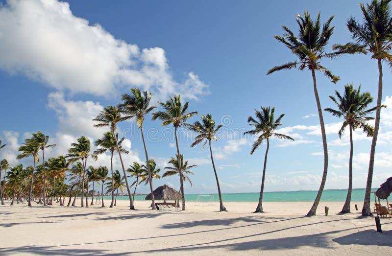 Large beach royalty free stock image