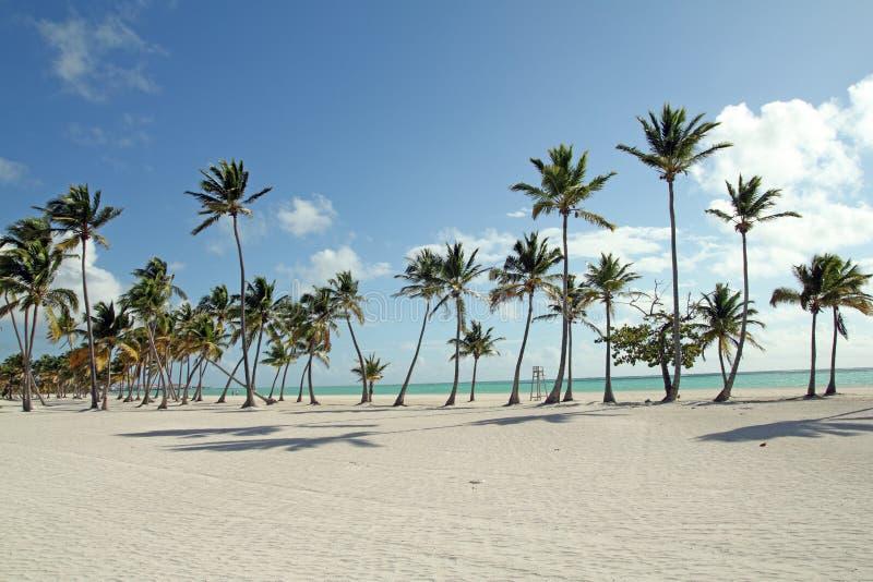 Large beach stock photography