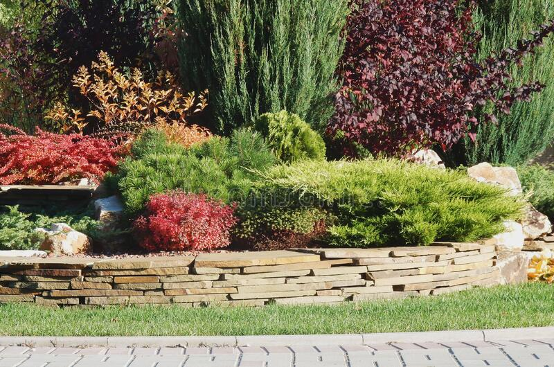 A Large Bed Of Stones Stock Photo Image Of Grow Large 171270982