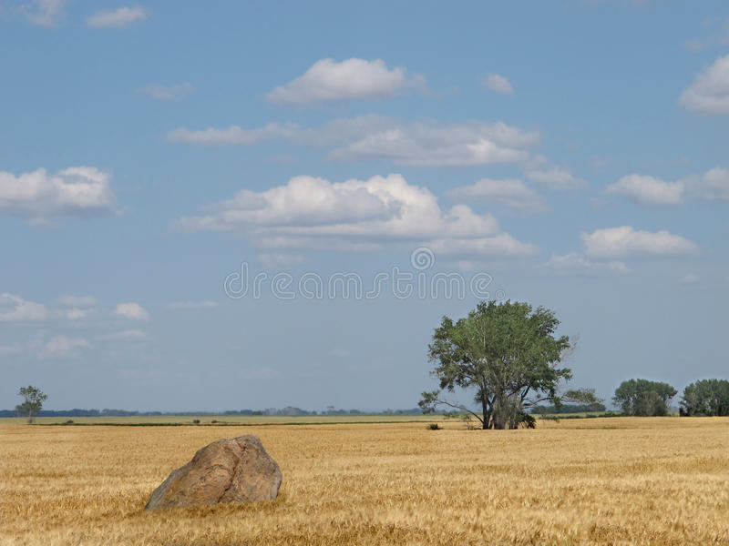 Download Large Boulder In A Prairie Wheat Field. Stock Photo - Image: 26485244