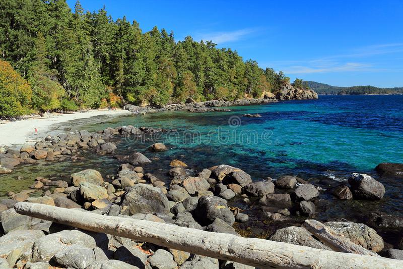 Sandy Beach and Clear Water at Aylard Farm in East Sooke Regional Park, Vancouver Island, British Columbia, Canada. Large boulders rim the fine sandy beach and royalty free stock photos